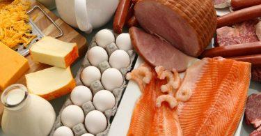 В чем заключается вред животного белка?