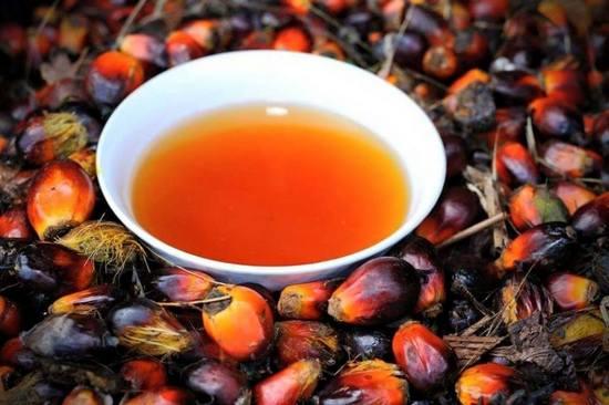 свойства пальмового масла