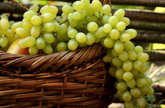 Ценность виноградных ягод для женщин