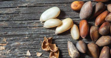 Очищенные кедровые орехи: польза и вред