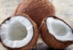 Польза кокосов для организма человека