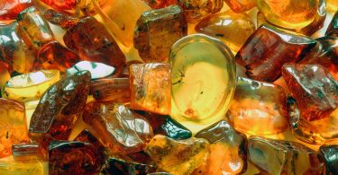 Янтарная кислота: польза и вред