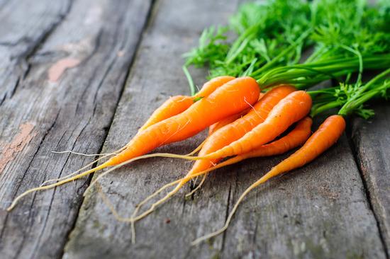 Морковь: польза и вред свежих и вареных корнеплодов