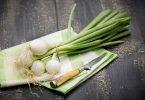 Польза зеленого лука, возможный вред
