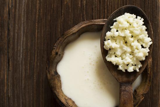 Молочный гриб: польза и вред