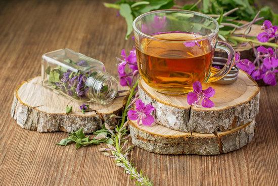 Полезные свойства иван-чая для организма