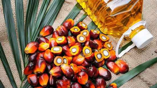 Пальмовое масло: польза и вред для здоровья