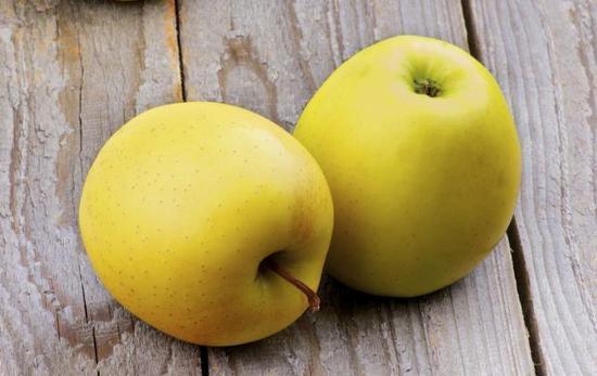 желтые яблоки: польза и вред
