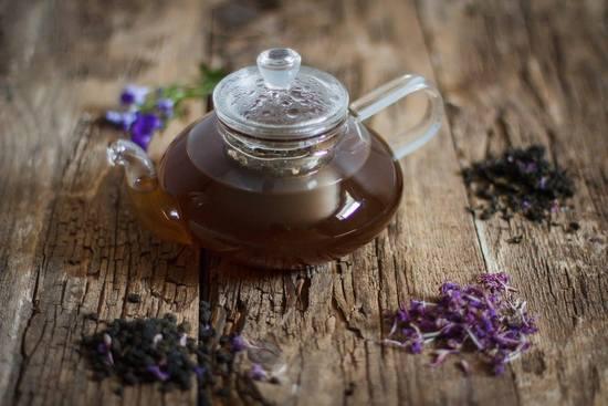 Польза и вред для организма иван-чая