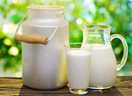 целебные свойства козьего молока