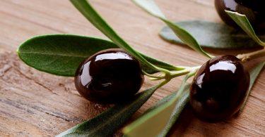 Маслины: польза и вред