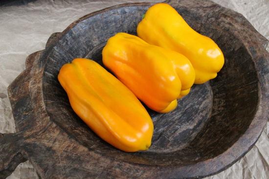 Достоинства болгарского перца желтого окраса