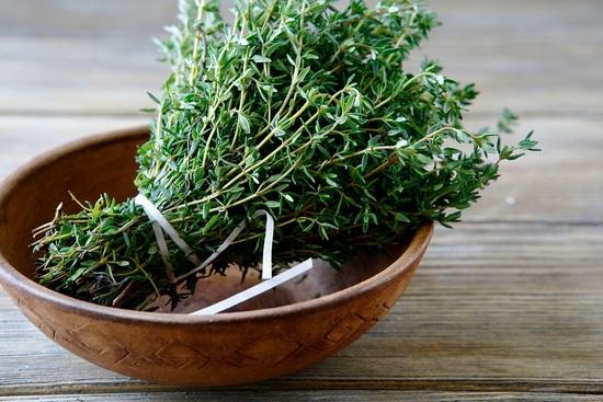 Чабрец: польза и вред травы для организма